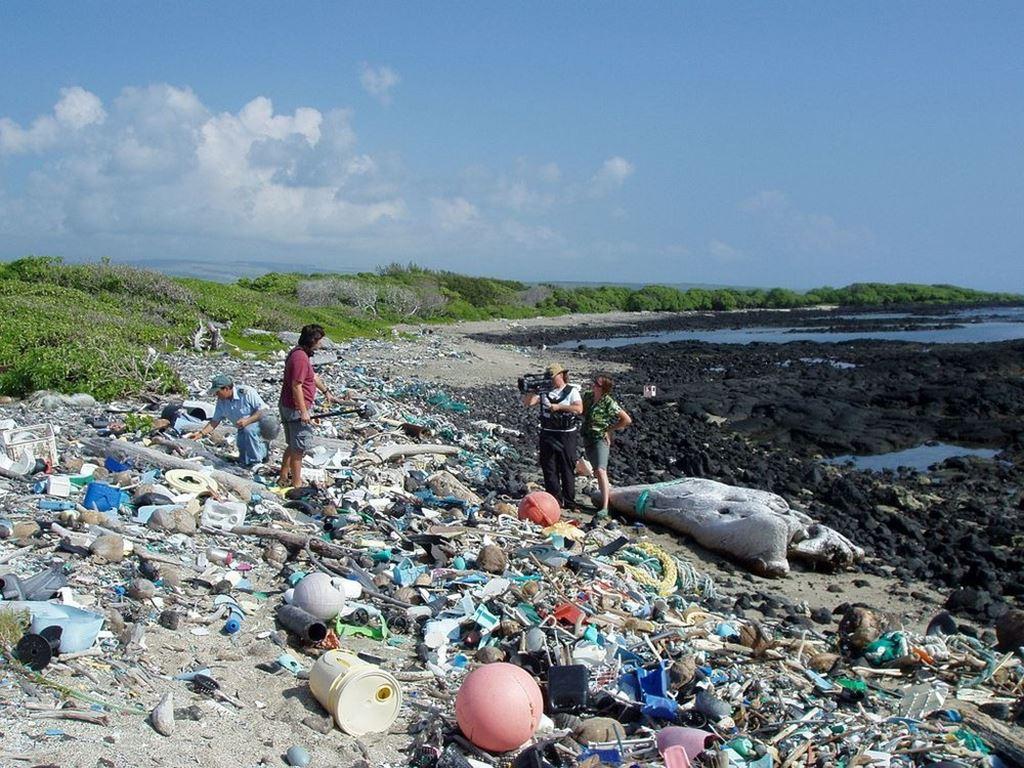 Kamilo Beach, a praia de plástico do Havaí